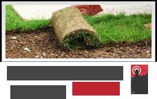 hazır rulo çim fiyatları